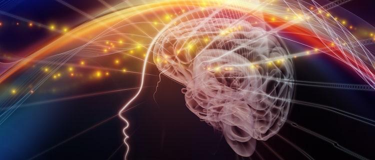 サイロシン サイロシビンが分解されたもので脳に強く作用する