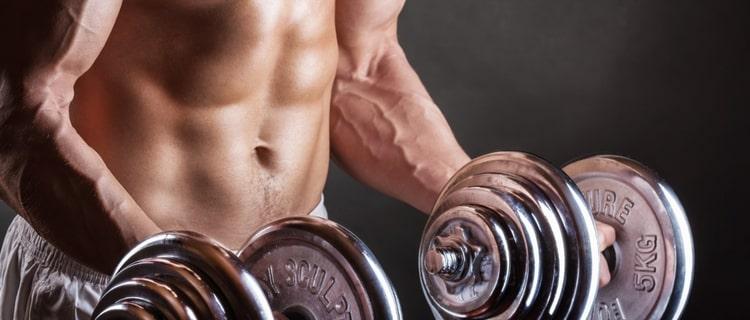 ③筋肉を育てる成長ホルモンの分泌量が増加する