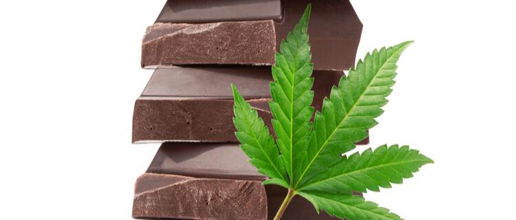 大麻の葉とブロックチョコレート