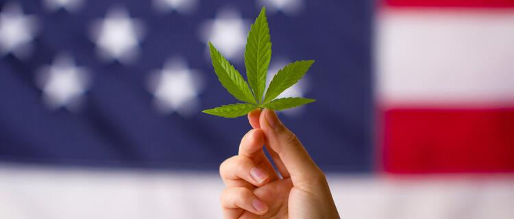 アメリカ国旗と大麻の葉