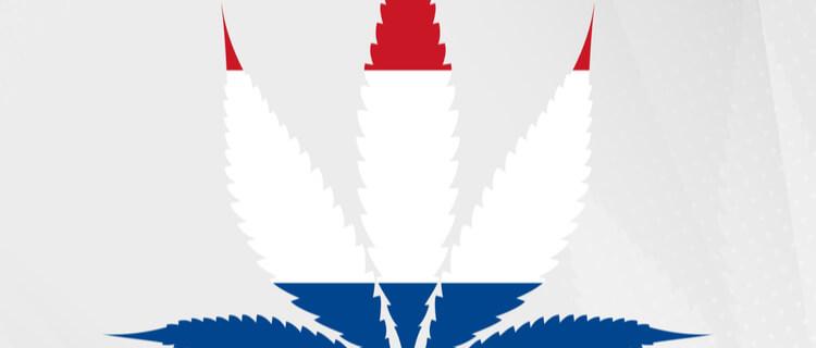オランダ国旗と大麻