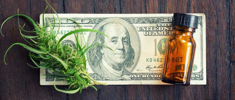 紙幣の上の大麻草と瓶