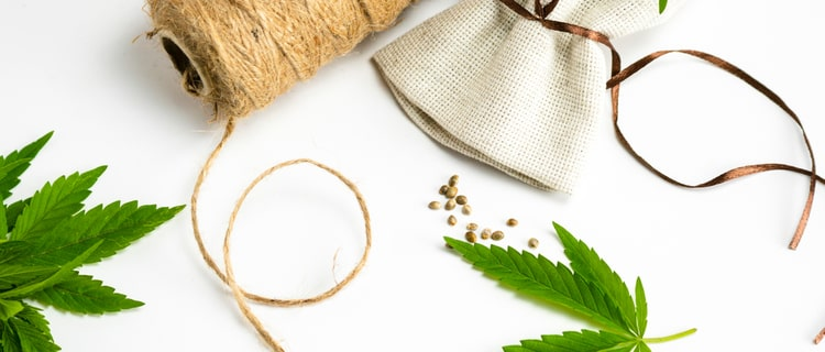 大麻の葉と種子