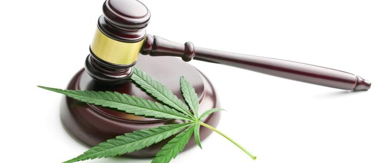大麻の葉と木槌