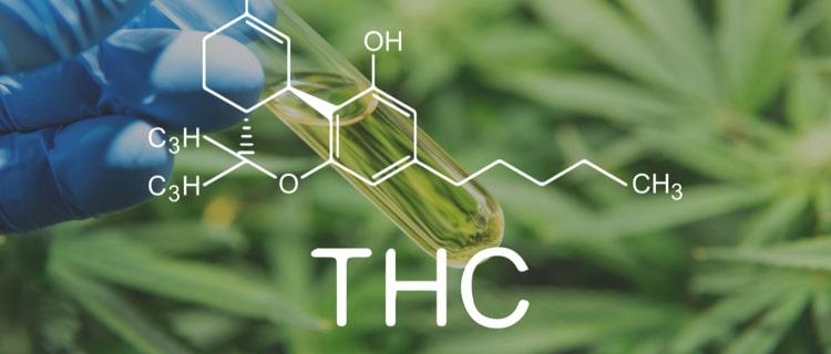 THCの構造式と大麻と試験管