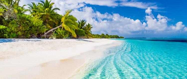 海岸の青い海