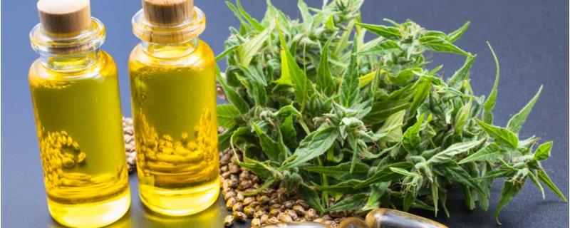 オイルと大麻の葉と種子